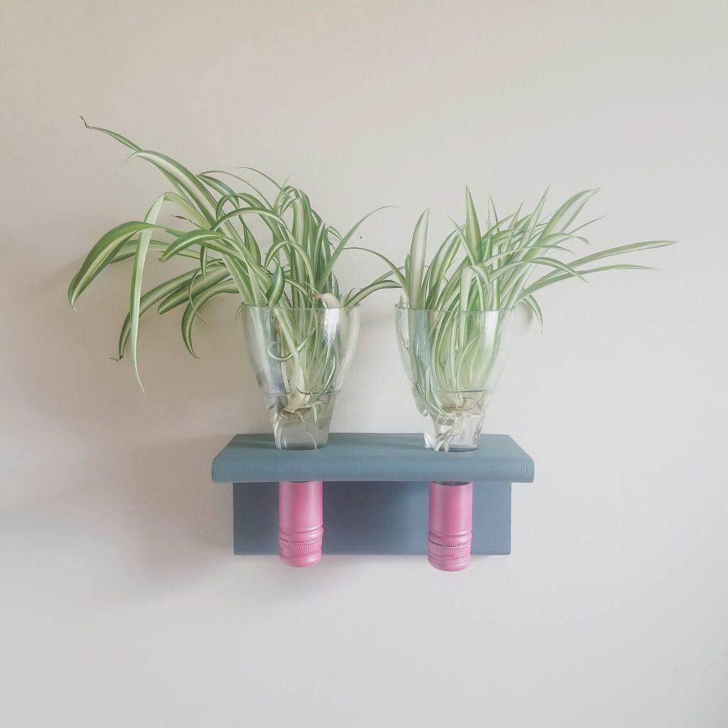 Recycled Wine Bottle Plant Propagation Station